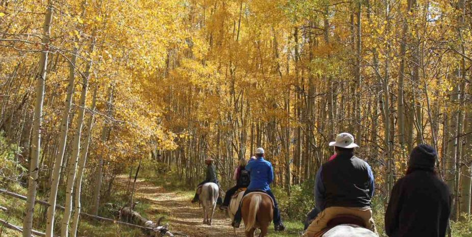 Activities Overview The Majestic Dude Ranch
